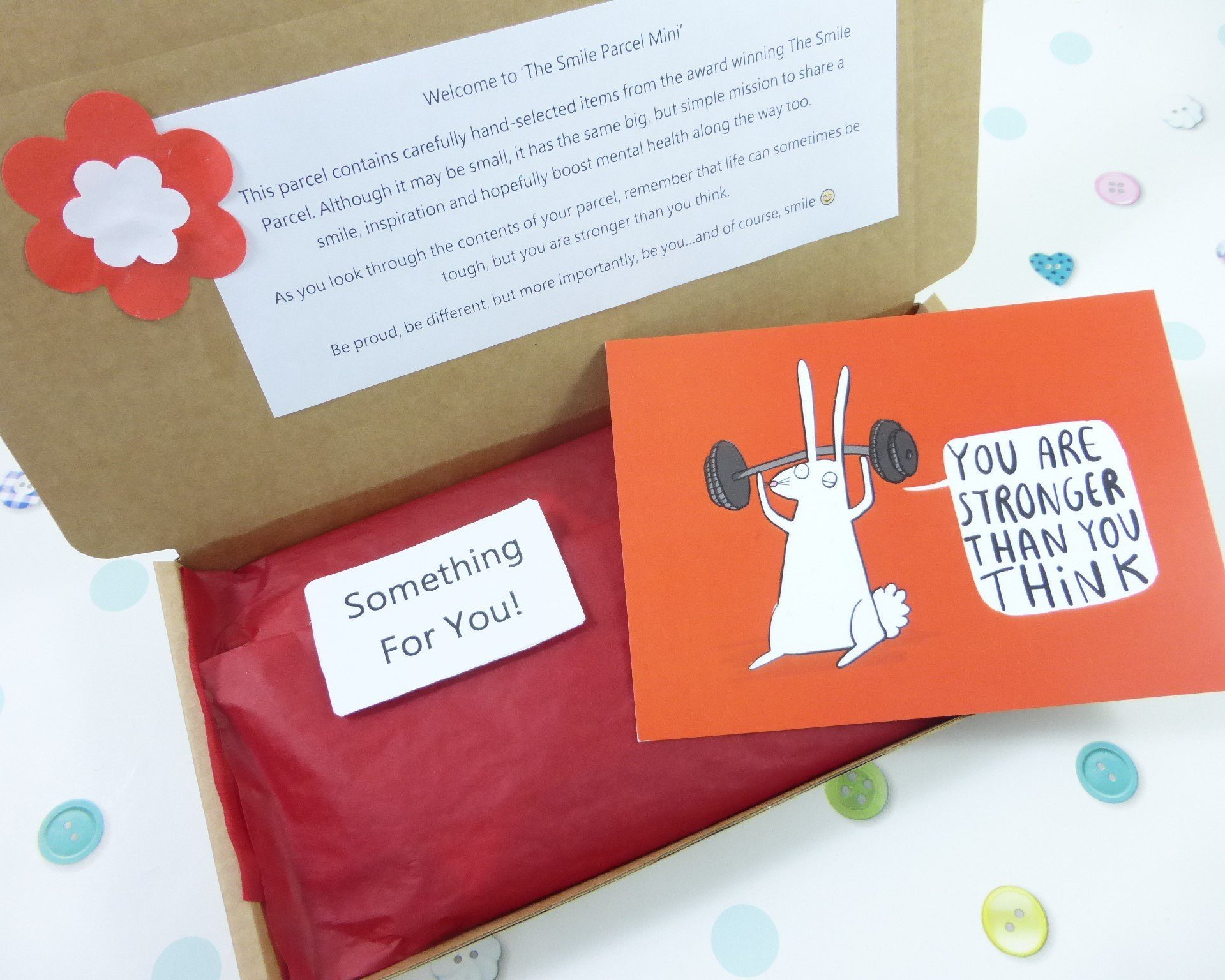 Red Letterbox Friendly, Pick Me Up Gift, The Smile Parcel Mini, Self Care Box, Mental Health Gift, Wellbeing Box Kind Shop 2