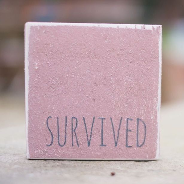 Survived sign wooden reclaimed pink