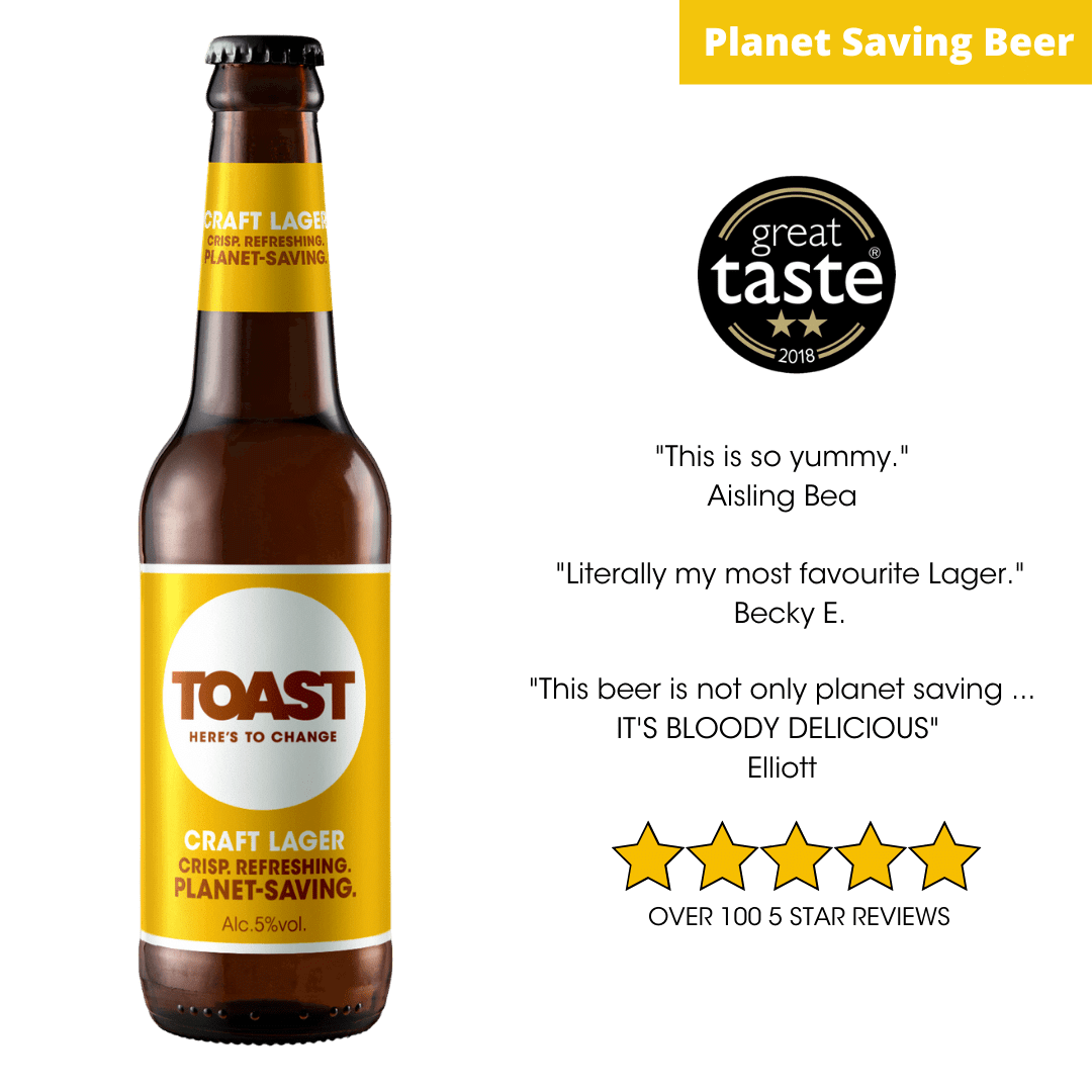 Toast Ale Bottled Craft Lager Reviews
