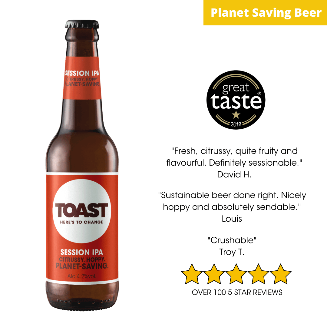 Toast Ale Bottled IPA Bread Beer (India Pale Ale)