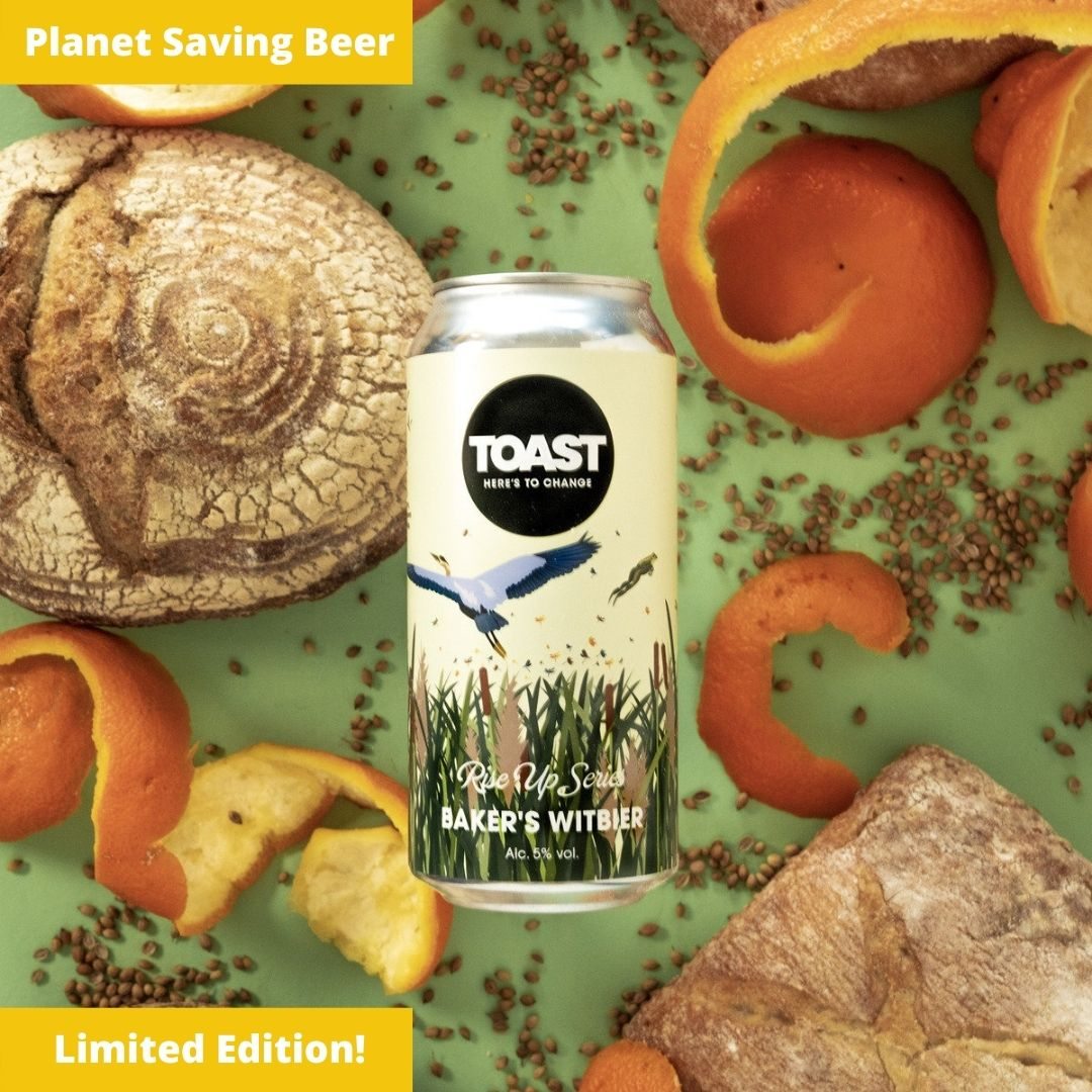 Toast Ale Canned Baker's Witbier Bread Beer