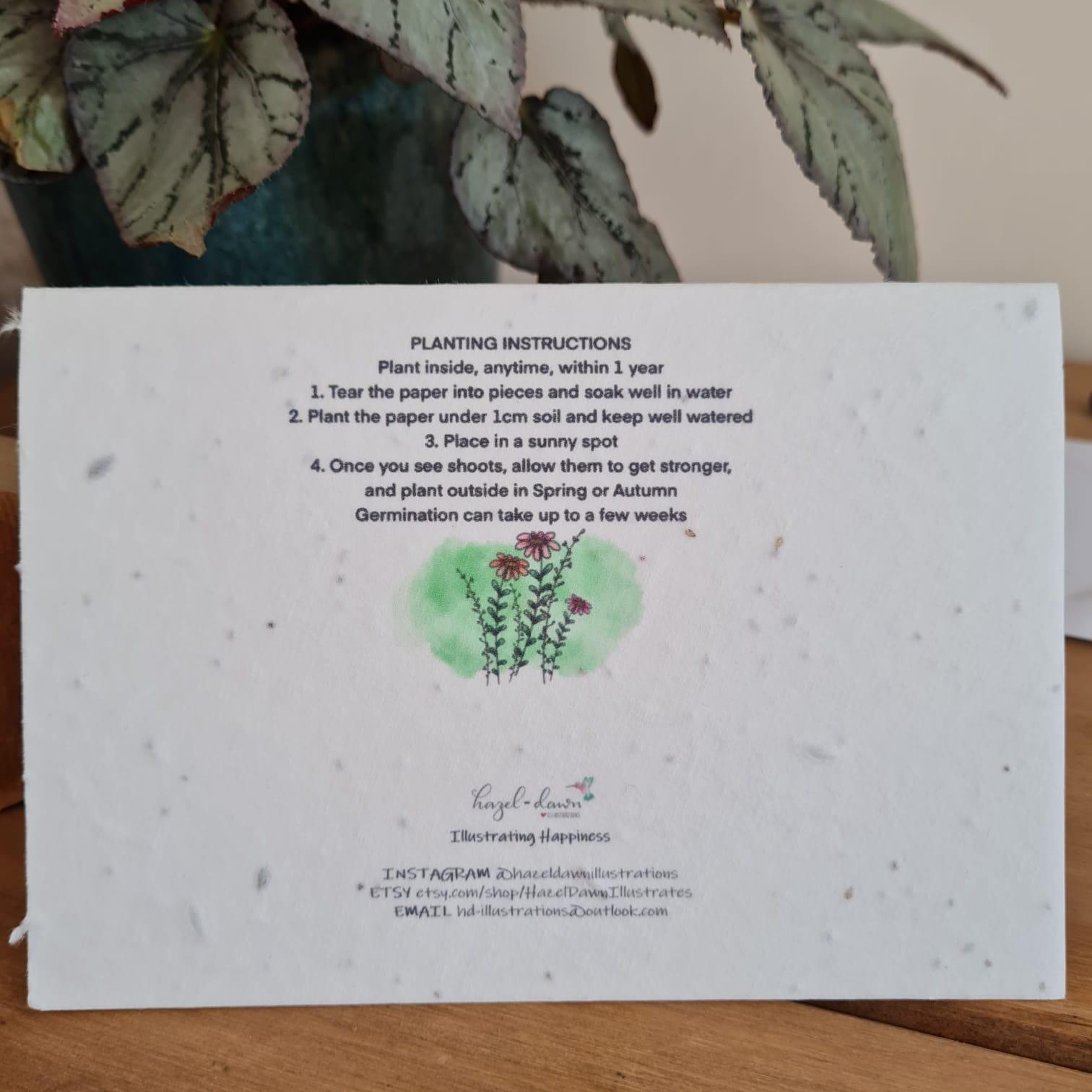 Wildflower seed card back landscape