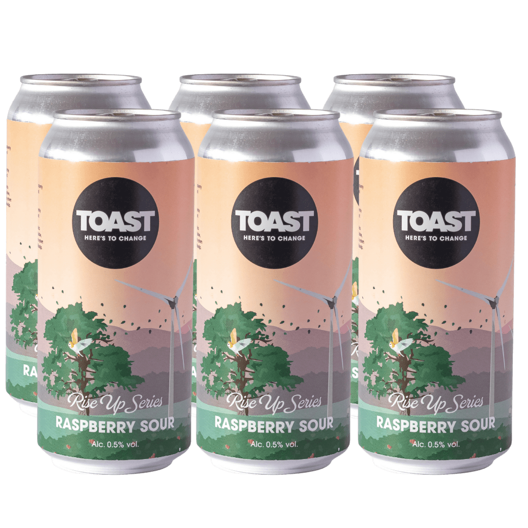 Toast Ale Raspberry Sour Beer Low Alcohol Cans