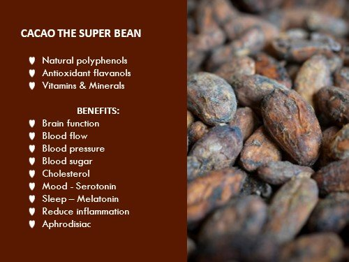 Why is Cacao the superbean superfood?