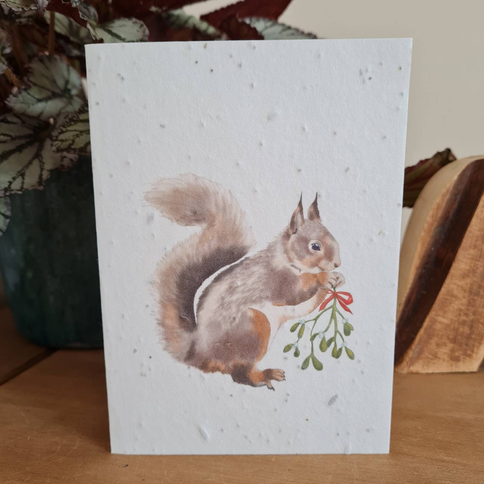 Plantable Wildflower Seed Christmas Card With Santa Squirrel - Bee and Eco Friendly